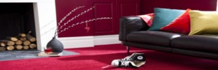 Stain Resistant Carpet Deals