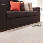 GALA BERBER CORD Stain Resistant Carpet